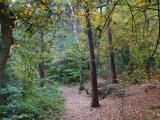 ロンドン郊外アディントン・ヒルズ Addington Hills