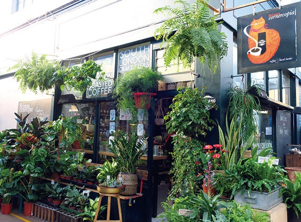 Cornercopia Plant Shop